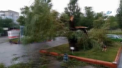 - Rusya'da kasırga ağaçları köklerinden söktü
