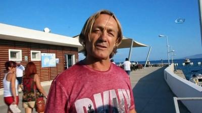 Bodrum'da denize giren turistler şok oldu... Denizde ölü yunus balığıyla karşılaşan turistler neye uğradıklarını şaşırdı