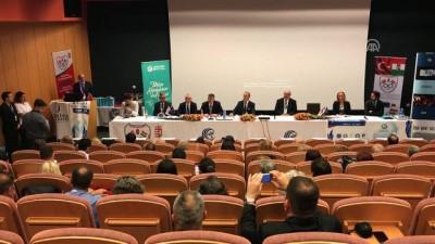 konferans - Macaristan'da uluslararası ekonomi konferansı - DUNAUJVAROS