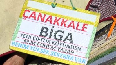 CHP İstanbul İl Başkanı Canan Kaftancıoğlu - İSTANBUL