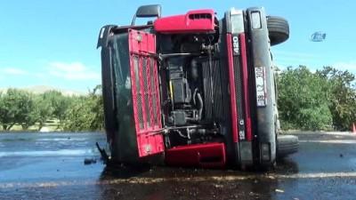 Direksiyon başında arının soktuğu şoför kaza yaptı, yakıt tankeri devrildi
