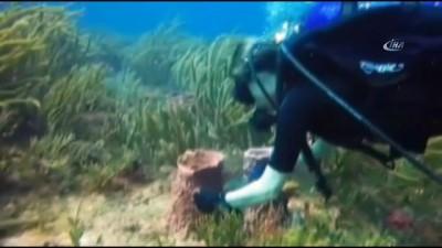 Denizin altındaki çöpleri gönüllü olarak temizliyor
