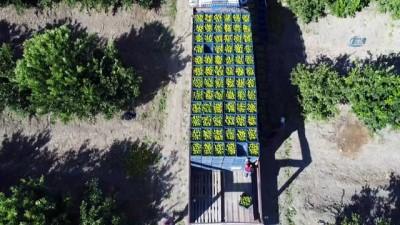 'Türkiye'de tarım arazileri yok oluyor'