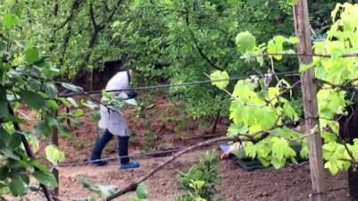 Yaşlı kadın bahçede ölü bulundu