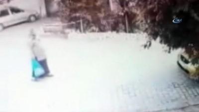 Çiçek hırsızı yaşlı kadın güvenlik kamerasına yakalandı