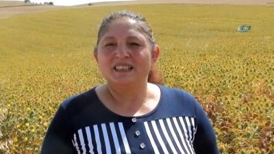 Eşini kaybetti mücadeleden yılmadı azmiyle köylü kadınlara örnek oldu