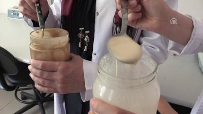 Karadeniz fındığı ve balı dondurmayla buluştu - ORDU