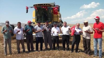 15 Temmuz'da yakılan tarlalarda hasat zamanı - ANKARA