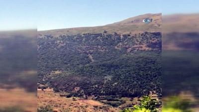 Bitlis 6 terörist etkisiz hale getirildi