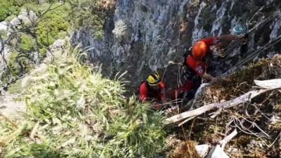sili -  60 metre yükseklikte keçi kurtarma operasyonu