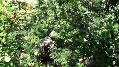 jandarma - Kaybolan 3 yaşındaki Evrim'i arama çalışmaları sürüyor - TOKAT