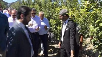 Bakan Pakdemirli Yozgat'ta meyve bahçesini gezdi