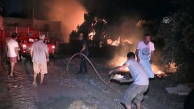 yangin yeri - Bodrum'da tarım arazisi ve otluk alanda yangın - MUĞLA