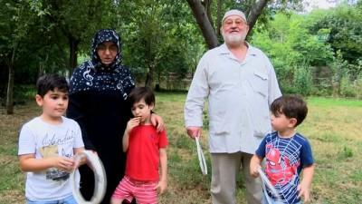 gures -  Yaşlı çift kendi bahçelerinde 'Survivor' mücadelesi yaptı