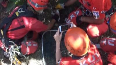 12 metre derinliğindeki kuyuya düşen yavru kediyi AKUT ekipleri kurtardı