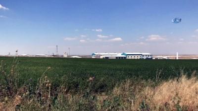 Tuz Gölü'ndeki doğalgaz yeraltı depolama tesisi havadan görüntülendi