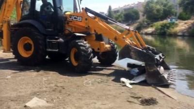 Edremit'te yunus balığını silahla vurdular