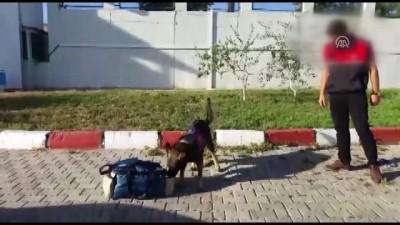 Şarj cihazında uyuşturucu yakalandı - VAN
