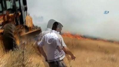 trol -  Alevler 65 dönümlük buğday tarlasını kül etti