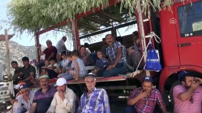 gures - Aydın'da 4. Boğa Güreşi Festivali