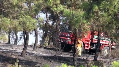 sili - Orman yangını - MANİSA