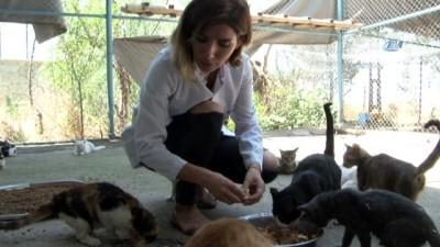 Veterinerden hayvanlar için 'su' uyarısı