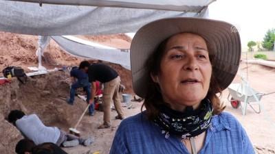 Çankırı'da 'fosil' kazıları