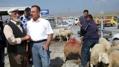 Hayvan pazarında 'kurban' hareketliliği - ANKARA