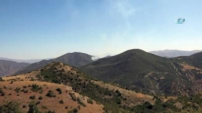 Pertek'te otluk alanda başlayan yangın ormana sıçradı