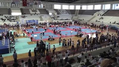 Dünya ve Avrupa kick boks şampiyonaları Türkiye'de yapılacak - ELAZIĞ