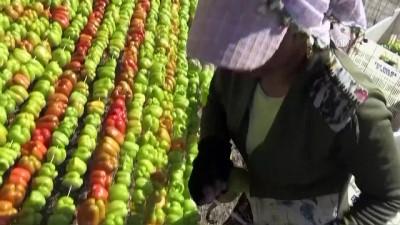 Gaziantep'te 'kurutmalık mevsimi' başladı