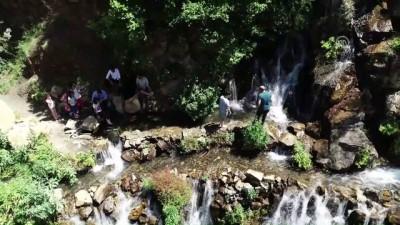 Doğu Karadeniz'in 40 kaynaklı şelalesine turist ilgisi - GÜMÜŞHANE