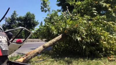 saglik ekibi -  Minibüs yol kenarındaki ağaca çarptı: 4 yaralı