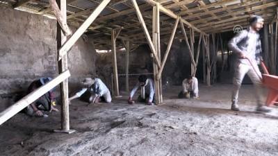30 yıldır süren kazı çalışmaları Urartu tarihine ışık tutuyor - VAN