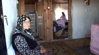 Bahriye Teyze 50 yıldır dağda tek başına yaşıyor