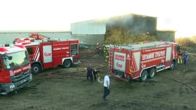 aniz yangini - Çatalca'da yangın - İSTANBUL