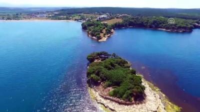 Hamsilos Tabiat Parkı ziyaretçilerine görsel şölen sunuyor - SİNOP
