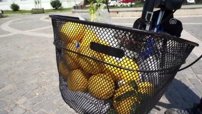Limon satarak Türkiye turu - EDİRNE