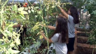 strateji -  Öğrenciler TÜBİTAK'a hazırlanıyor... Akıllı sera ile 8 kata kadar su tasarrufu