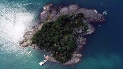 arkeolojik kazi - Mitolojik Giresun Adası'na turist ilgisi (2) - GİRESUN