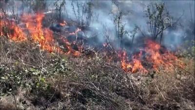 aniz yangini - Silivri'de Anız Yangını - İSTANBUL