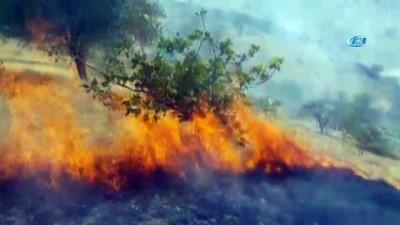 aniz yangini -  Fıstık bağlarında yangın