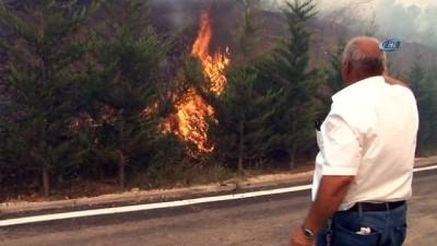 sivil savunma -  Orman bölgesindeki evler tahliye ediliyor