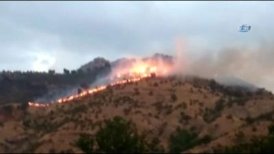 Batman'da orman yangını...15 hektar orman kül oldu