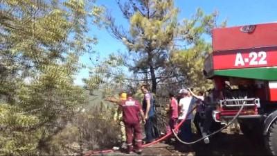 helikopter -  Alanya'daki orman yangını kontrol altına alındı