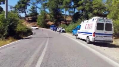 direksiyon -  Antalya'da safari minibüsü devrildi: 1 Çek turist öldü, 8 yaralı