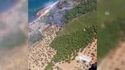helikopter - Ayvalık'ta orman yangını (2) - BALIKESİR