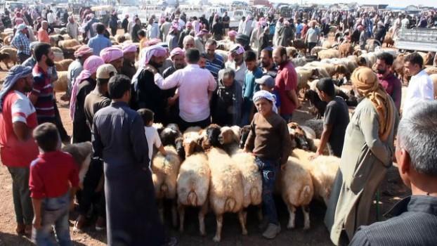 muhalifler - Fırat Kalkanı bölgesinde Kurban Bayramı hareketliliği - AZEZ