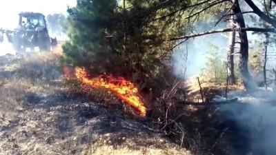 helikopter - Göynük'de orman yangını - BOLU