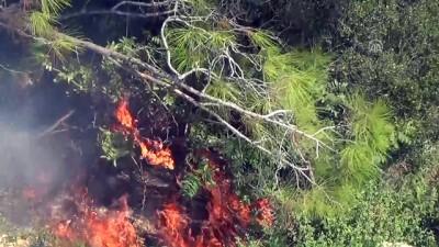 Erdemli'de orman yangını - MERSİN